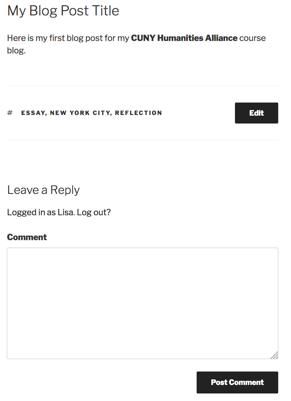 Comment Box under Blog Post